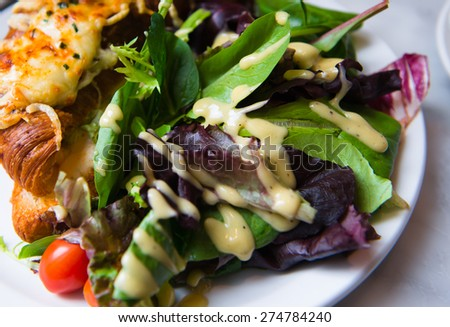 Healthy food dish consisting croissants melted cheese browned crust salad from fresh leaves greens spinach lettuce tomato drizzled vinegar dressing. Beautiful healthy nutritious and delicious lunch. - stock photo