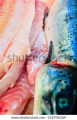 Healthy food nutrition. Various fishes in  at famous fish market (Fisketorget) in Bergen, Norway