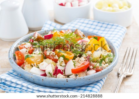 healthy food - salad with fresh vegetables and cottage cheese on a plate, close-up - stock photo