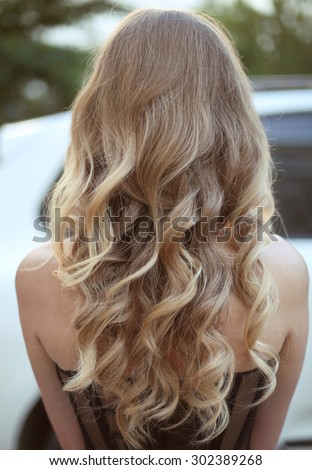 Healthy hair. Curly long hairstyle. Back view of Blond hairs. hair styling.  - stock photo