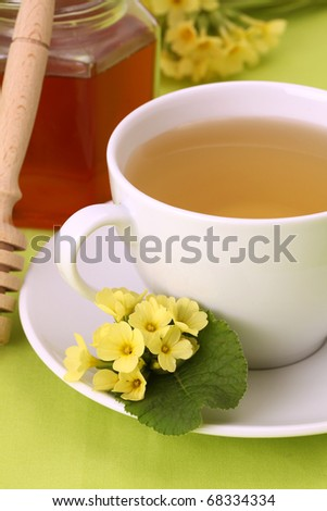 Healthy herbal tea made from freshly picked primroses with honey