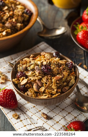 Healthy Homemade Granola with Nuts and Dried Cranberries - stock photo