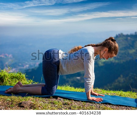 cow pose stock images royaltyfree images  vectors