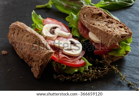 Healthy organic sandwiches with salad and tomatoes - stock photo