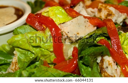 Healthy Salad with Lettuce, Red Peppers, and Chicken