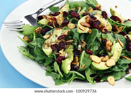 Healthy spinach and arugula salad with cilantro, dried cranberries, spiced almonds and avocados served with a lite vinaigrette.
