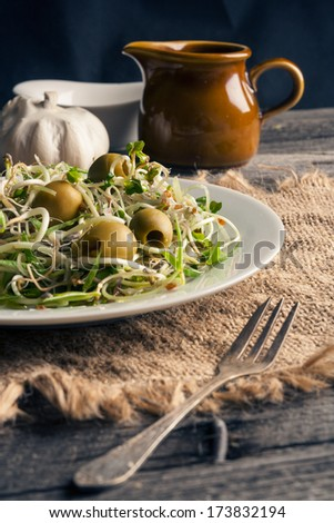 healthy sprouts and olives salad - stock photo