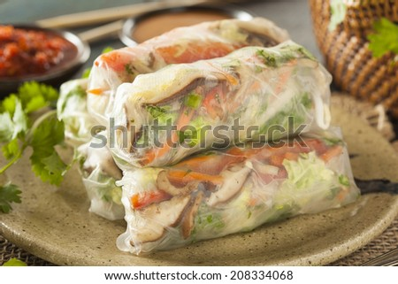 Healthy Vegetarian Spring Rolls with Cilantro Carrots and Cabbage - stock photo