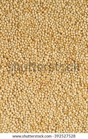 Healthy white quinoa seeds close up shot - stock photo