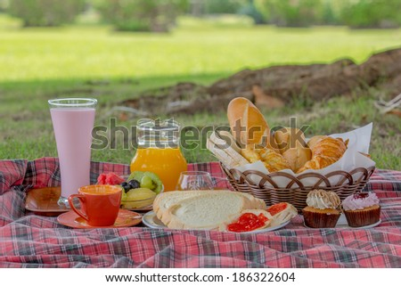 Healthy with sandwich and  orange juice at the picnic in the park - stock photo