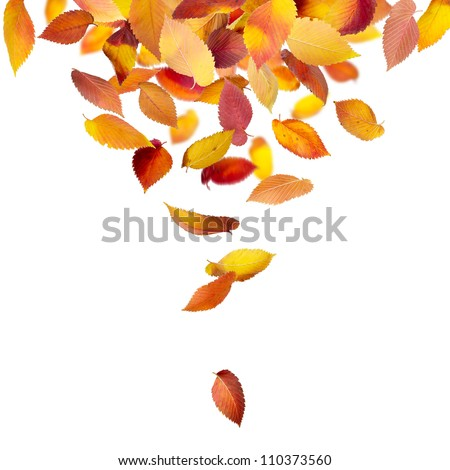 Heap of autumn leaves falling from above isolated on white - stock photo