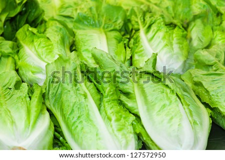 Heap of cabbage - food background - stock photo