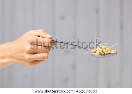 Heap of chickpeas sprouts and hand holding spoon with chickpeas.