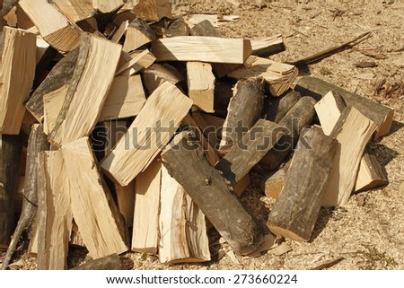 Heap of chopped hornbeam firewood over sawdust in bright sunlight - stock photo