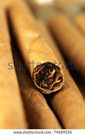 Heap of cigars close-up. Shallow DOF.