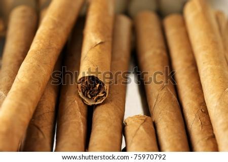 Heap of cigars. Full frame. - stock photo