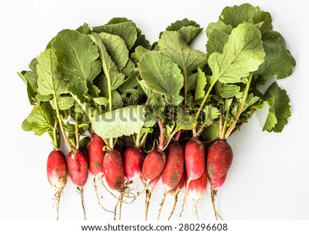 Heap of fresh ecological radishes from the ground on a white background  - stock photo