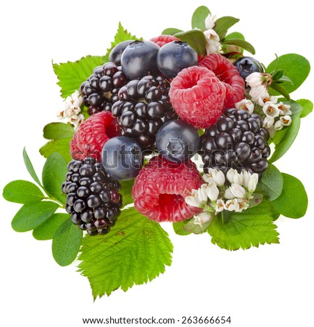 Heap of Fresh forest berries with flower isolated on a white background - stock photo