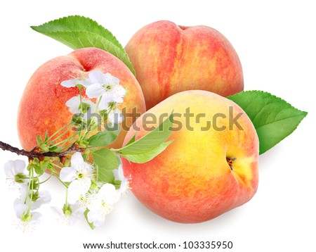 Heap of fresh orange peaches with green leaf and flowers. Placed on white background. Close-up. Studio photography.