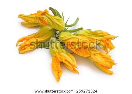 Heap of fresh zucchini flowers. Isolated on white background. - stock photo