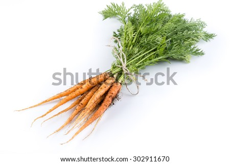 heap of freshly picked carrots isolated on white - stock photo