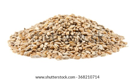 heap of grain on a white background - stock photo