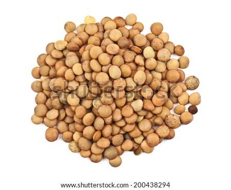 heap of lentil on white - stock photo