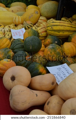 Heap of multicolored, striped Carnival Squash, Butternut Squash and Acorn Squash for sale at the outdoor, organic farmers' market in Palm Springs, California. - stock photo