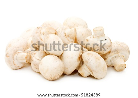 Heap of of mushroom champignon isolated on white background. - stock photo