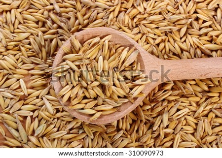 Heap of organic oat grains with wooden spoon, healthy food and nutrition