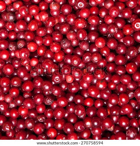heap of red cherry, background - stock photo
