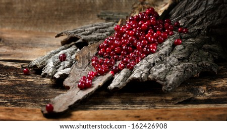 Heap of ripe cranberries on a piece of bark - stock photo