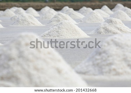 Heap of sea salt in a field prepared for harvest. - stock photo