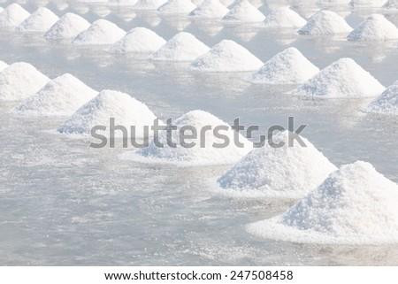 Heap of sea salt in salt farm ready for harvest,  Thailand. - stock photo