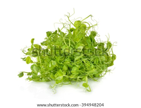 heap of snow pea sprouts or Toumyou sprouts on white background - stock photo