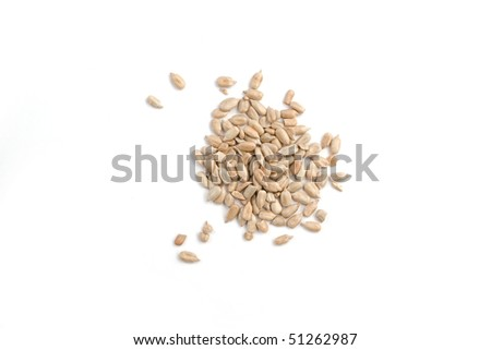 Heap of sunflower clean seeds - stock photo