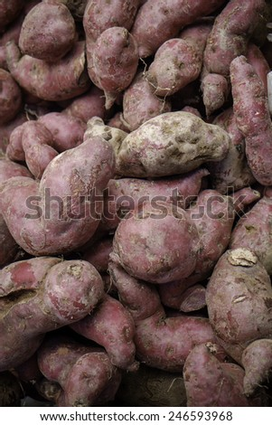 Heap of sweet potatoes - stock photo
