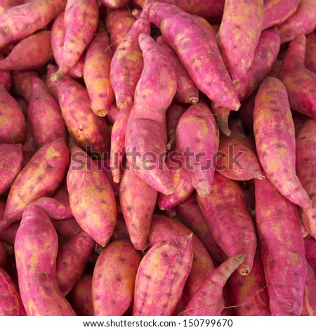 heap of sweet potatoes in market - stock photo
