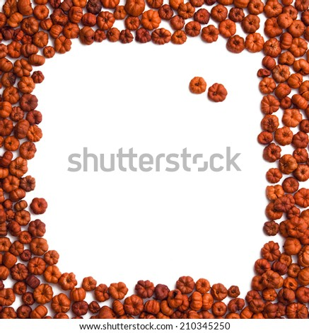 Heap of tiny red and orange pumpkin putka pods on white. Autumn, Fall, Halloween, harvest concept. Frame, background with copy space for text. - stock photo