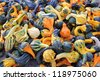 heap of tiny spotted colorful pumpkins - stock photo