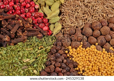 Heap of various kinds of dry spices - stock photo