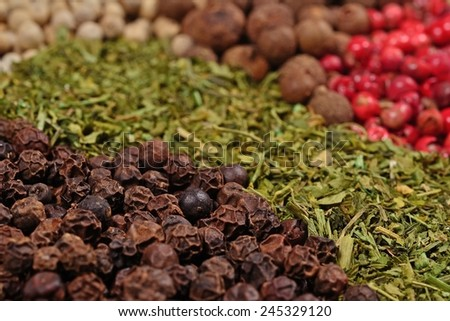 Heap of various kinds of dry spices close up  - stock photo