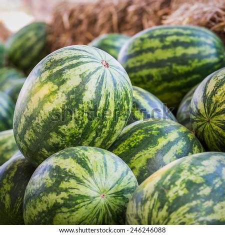 Heap of watermelon at farmers market - stock photo