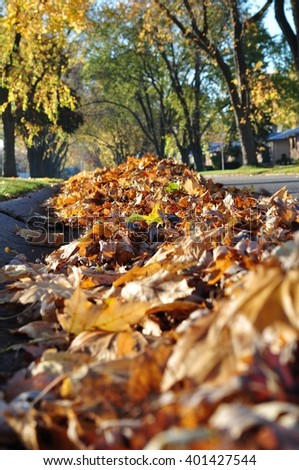 Heap of yellow autumn leaves on a street, closeup. - stock photo