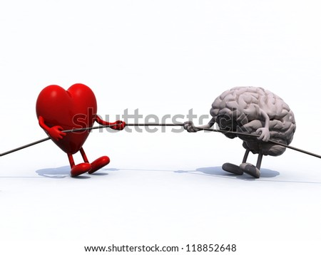 heart and brain tug of war rope, 3d illustration - stock photo