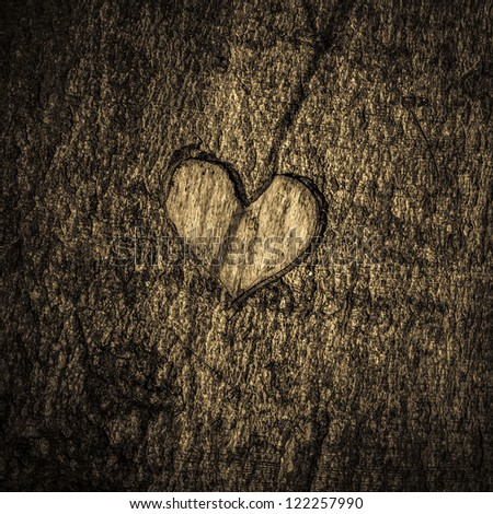 Heart - bark - stock photo