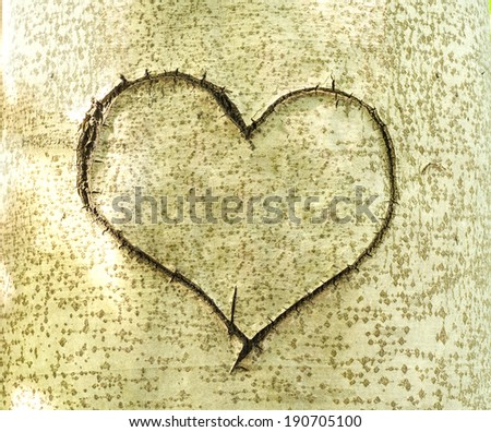 Heart carved in bark of tree. Love story - stock photo