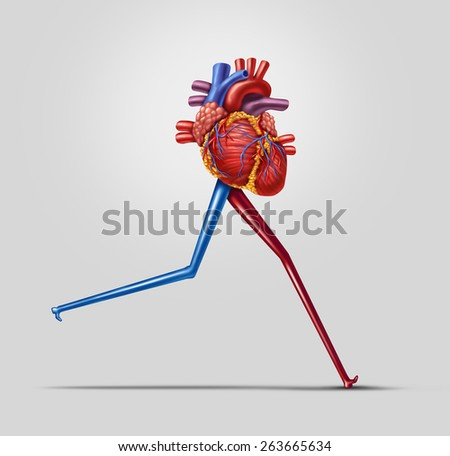 Heart fitness concept as a human cardiovascular organ with running or jogging legs made from arteries as an exercise and health care icon of living a fit lifestyle. - stock photo