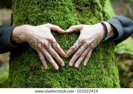 Heart hand on tree with moss, loving the nature - stock photo