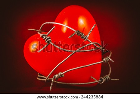 Heart in Barbed Wire on Red 1. A plastic heart wrapped in barbed wire fence. Valentines day concept. - stock photo